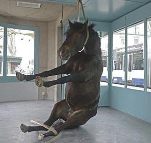 """esempio di arte contemporanea Maya Bosh e Régis Golay,""""Cheval de bataille"""" 2013 galleria d'arte Zabriskie Point - Ginevra (Cavallo impagliato impiccato)"""